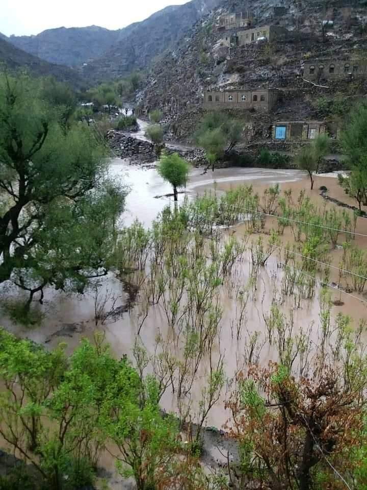 فيضانات الأمطار تتسبب بخسائر كارثية في اليمن