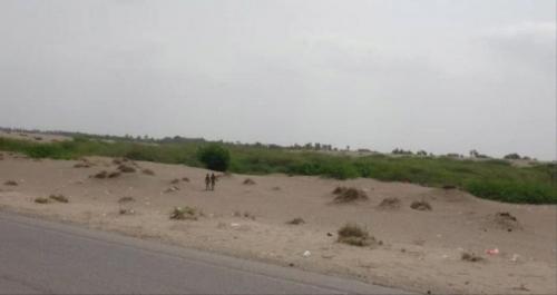 عادل المدوي يُحذر:الخطر قادم من البوابة الشمالية للعاصمة عدن
